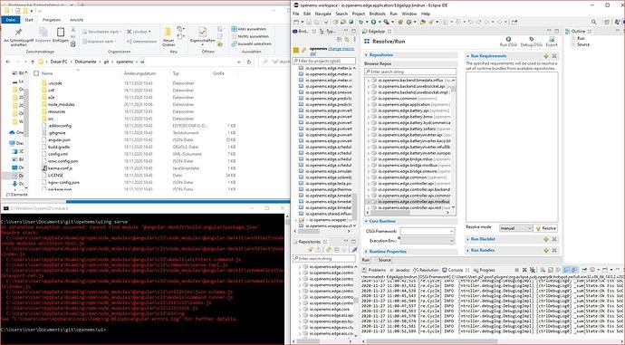 FEHLER-ng serve Windows Kommandozeile-27.11.2020
